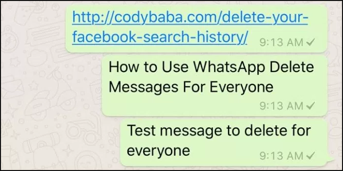 How to Use WhatsApp Delete Messages For Everyone