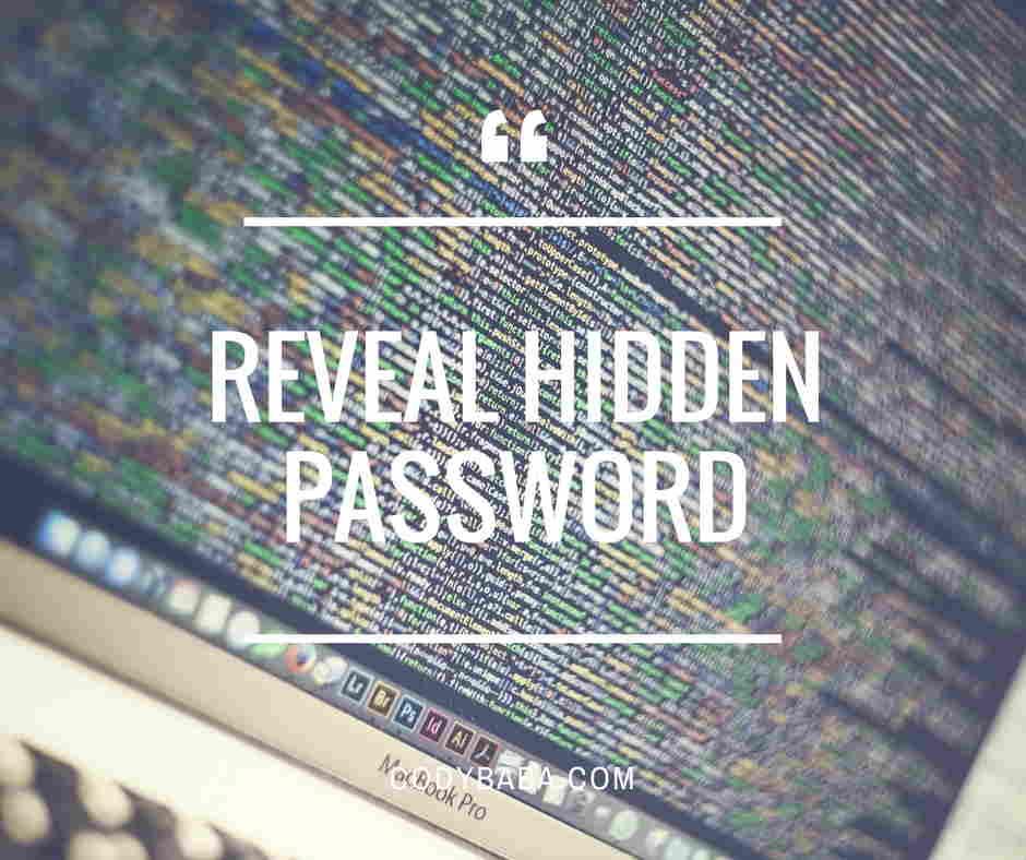 Facebook login page Inspect element reveal the hidden password